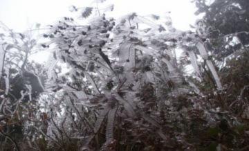 Miền Bắc hứng chịu thêm hai đợt không khí lạnh
