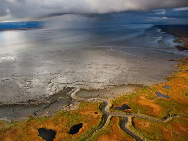 Mây bão đen kịt trên bầu trời vịnh Nushagak, Mỹ. Những trận báo bất thường này có thế ảnh hưởng tới việc vượt sông đẻ trẻ trứng của cá hồi ở khu vực này - Ảnh: Michael Melford.