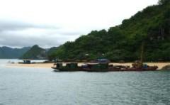 Chìm tàu du lịch ở Hạ Long, 12 người chết