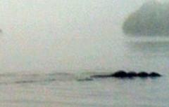 Lộ diện thủy quái huyền bí tại Anh