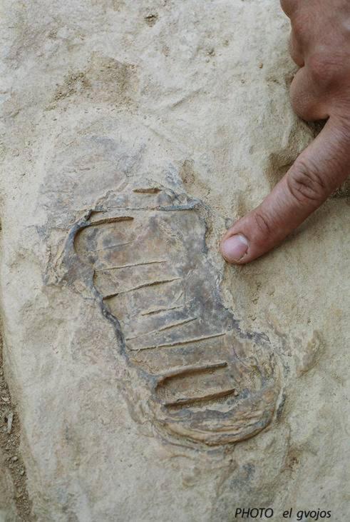 Người tiền sử đã phát minh bê tông và đá nhân tạo - Tin180.com (Ảnh 8)