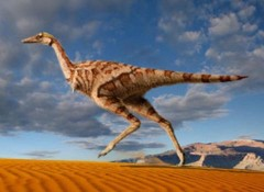 Phát hiện khủng long một ngón tay