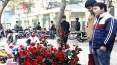 Sinh viên kiếm tiền ngày Valentine