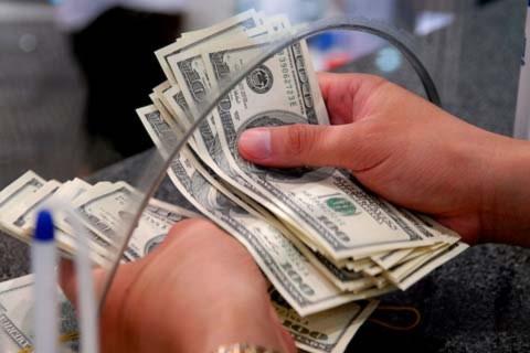 Một mức tỷ giá sẽ khó lòng phù hợp với mọi nhu cầu về ngoại tệ. Ảnh minh họa: Hoàng Hà