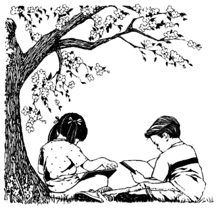 Bạn là một cái cây cho người khác
