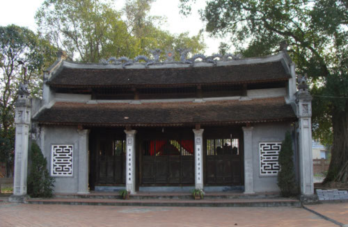 """Bất ngờ với vườn """"cụ cây"""" khổng lồ ở ngoại thành Hà Nội"""