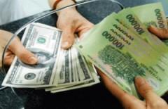 Các hiệu vàng TP HCM đồng loạt ngừng mua bán đôla