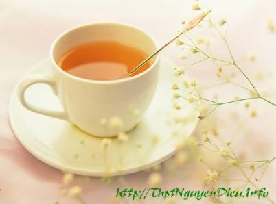 Câu chuyện của cái tách trà