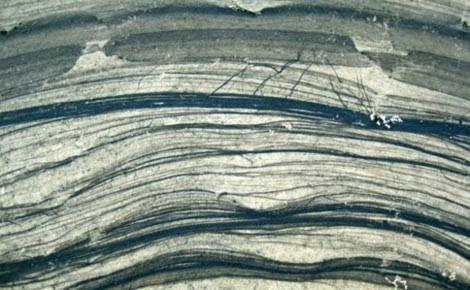 Con người đang nhuộm đen dần Trái đất - Tin180.com (Ảnh 6)