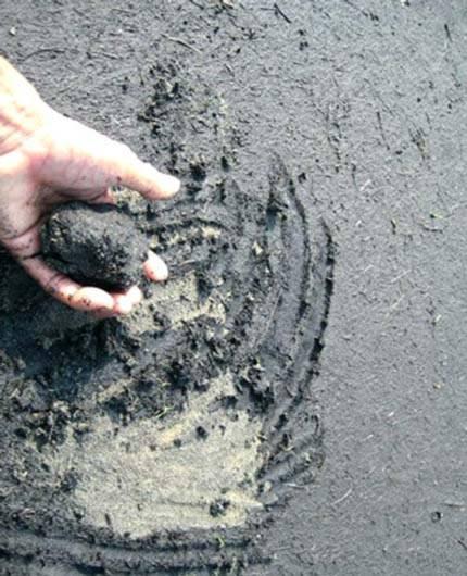Con người đang nhuộm đen dần Trái đất - Tin180.com (Ảnh 8)