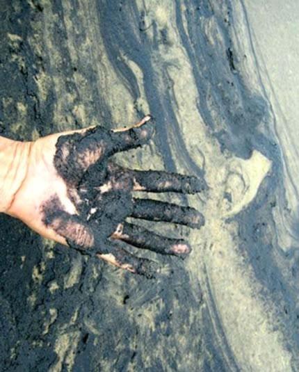 Con người đang nhuộm đen dần Trái đất - Tin180.com (Ảnh 10)