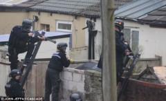 Huy động hơn 30 cảnh sát để bắt... hai con chó