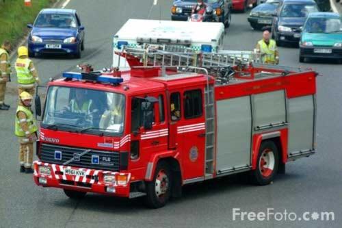 22 lính cứu hỏa giải cứu...một con mèo trên mái nhà