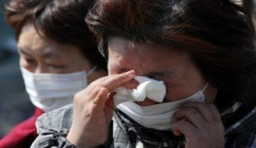 Bà mẹ Nhật tìm con trong vô vọng