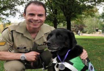 Chú chó được tặng huy chương dũng cảm
