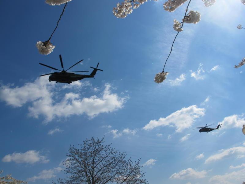 Hai chiêc máy bay trực thăng của Tổng thống thuờng xuất hiện trên bàu trời hoa vì bãi đáp của Dinh không xa đó