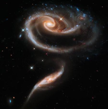 Hoa hồng khổng lồ trong vũ trụ