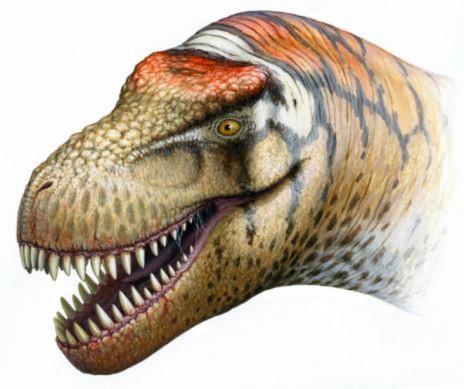Phát hiện khủng long