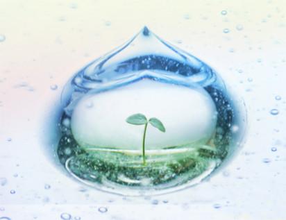 Thế giới khác trong một giọt nước: (Phần 1) Cuộc phỏng vấn với tiến sĩ Masaru Emoto