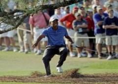 Tiger Woods tạm nghỉ đấu vì chấn thương