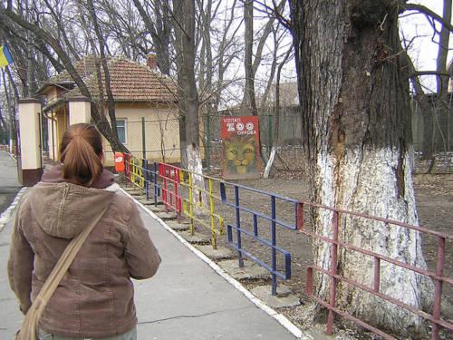Vườn thú Oradea