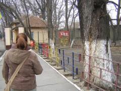 Vườn thú Rumani cấm động vật… yêu