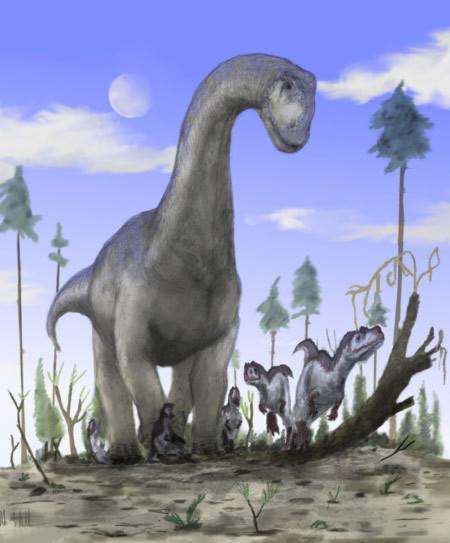 Đây là loài khủng long Camarasaurus, sống vào khoảng thời gian 100 triệu năm trước đây.