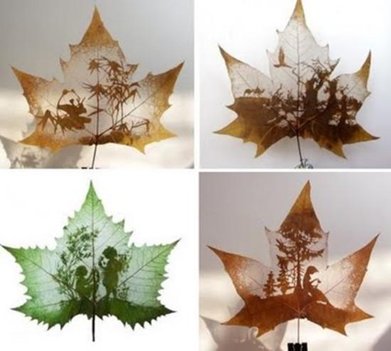 leaf-ar01