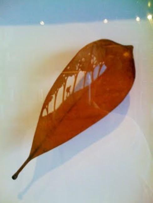 leaf-ar04