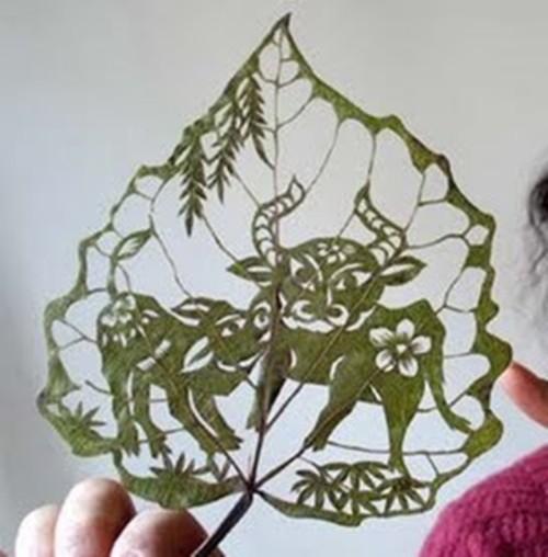 leaf-ar05