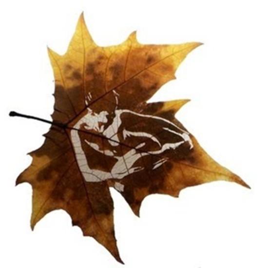 leaf-ar