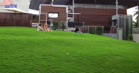 9. Đồi cỏ xanh ngát ở khu vực Southbank Parklands.