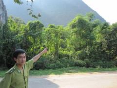 Kì bí rắn khổng lồ bảo vệ rừng Phong Nha - Kẻ Bàng