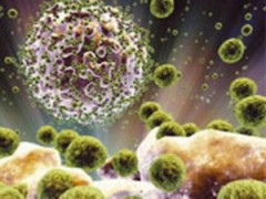 Mỹ điều chế vắcxin thử nghiệm chống virus HIV