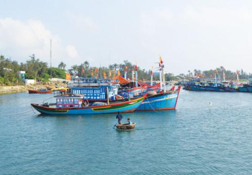 Ngư dân liên kết bám biển