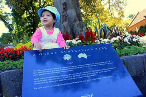 Còn đây là tấm hình chụp bên ngoài nhà lưu niệm của vị thuyền trưởng James Cook ở Fitzroy Garden: