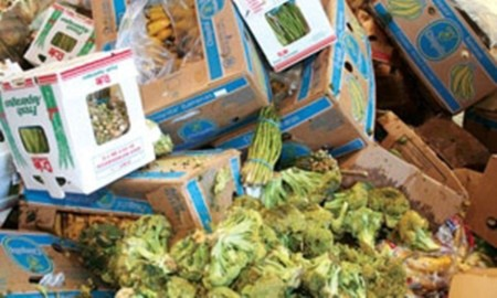 Thế giới lãng phí một phần ba sản lượng thực phẩm làm ra mỗi năm.