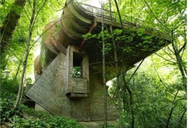 10 ngôi nhà 'tổ chim' độc đáo trên thế giới