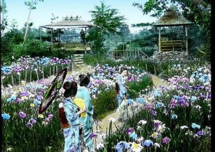 """Bộ sưu tập hình ảnh """"cực độc"""" về Nhật Bản xưa (Phần 1)"""