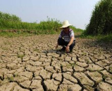 Hạn hán ảnh hương tới 34 triệu người Trung Quốc