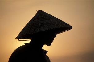 người nông dân Việt Nam cần cù chăm chỉ, làm việc từ tờ mờ sáng