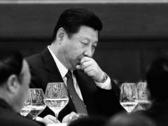 Tập Cận Bình, Phó Chủ tịch nước Cộng hòa Nhân dân Trung Quốc, người kế vị bất đắc dĩ cho Hồ Cẩm Đào ngày 29/09/2012. Photo: Feng Li/GettyImages/The Epoch Times