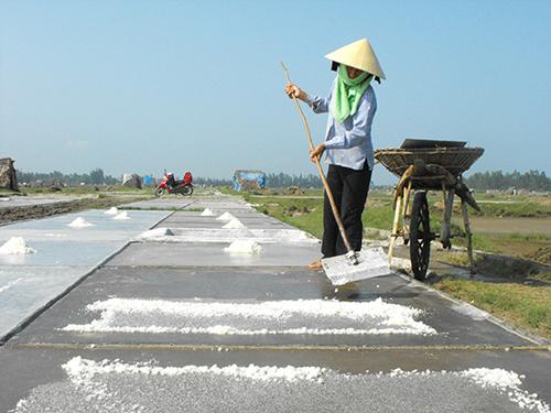 Việt Nam đang thừa muối chất lượng thấp, thiếu muối chất lượng cao