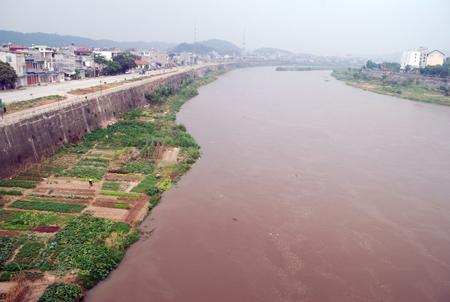 Sông Hồng dâng cao bất thường và nổi nhiều bọt trắng - Tin180.com (Ảnh 1)