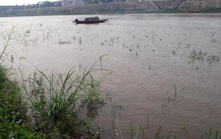 Sông Hồng dâng cao bất thường và nổi nhiều bọt trắng - Tin180.com (Ảnh 2)
