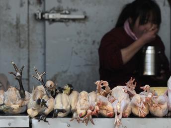 Cảnh chợ thịt gà vẻ ế ẩm, không mấy người dám mua, ở tỉnh An Huy. Ảnh chụp ngày 01/04/2013. REUTERS/Stringer