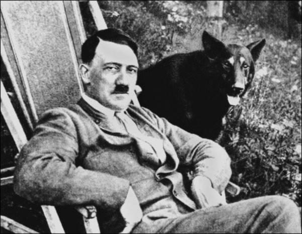 Điều ít được biết về đội quân chó biết nói của Hitler 3