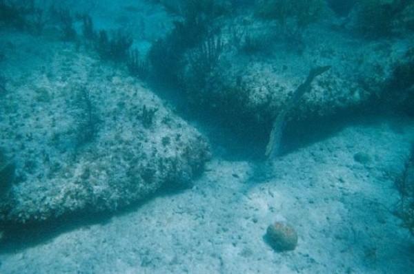 Những bí ẩn kinh ngạc chìm dưới đáy đại dương 2