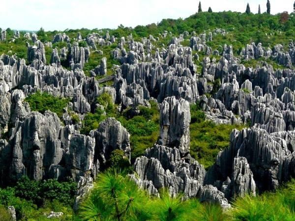 Thăm khu rừng đá khổng lồ được mệnh danh kỳ quan 1