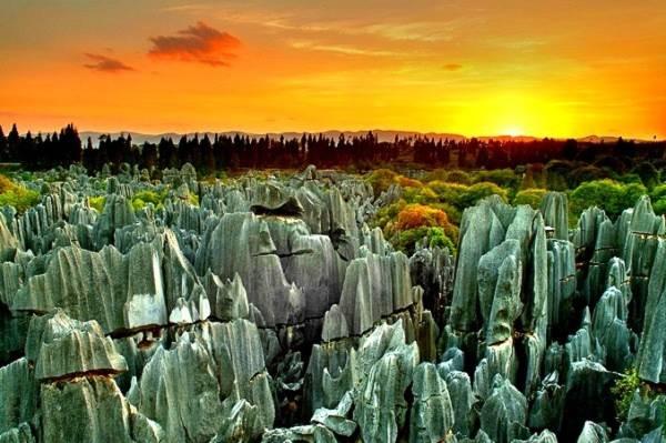 Thăm khu rừng đá khổng lồ được mệnh danh kỳ quan 10
